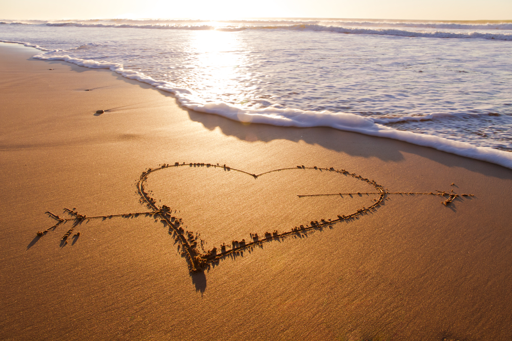 Photo Credit: Shutterstock